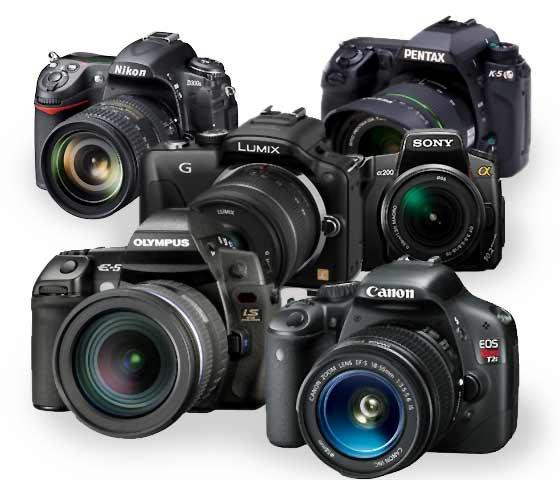 Perbedaan Kamera Prosumer Dengan Kamera DSLR