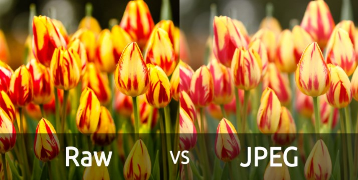 Perbedaan Raw Vs JPEG