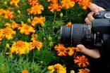 Tips Memotret Bunga yang Indah