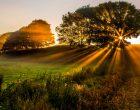 Golden Hours Dalam Fotografi