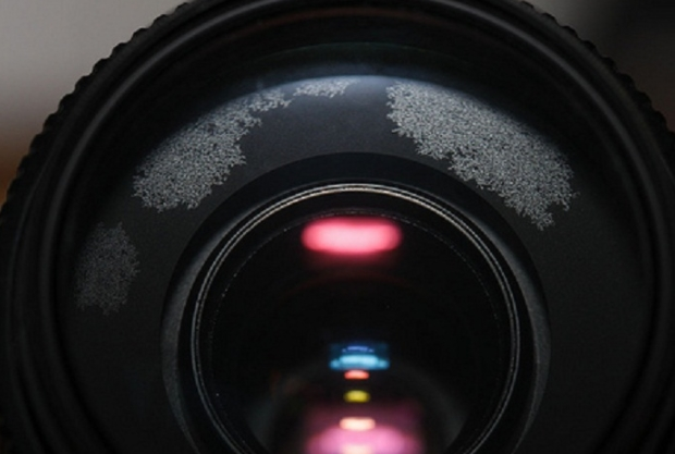 Cara Membersihkan Lensa Kamera Dari Jamur